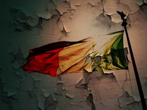 bandiera-italia-nella-melma.800