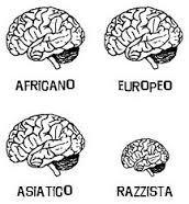 razzismo-cervello