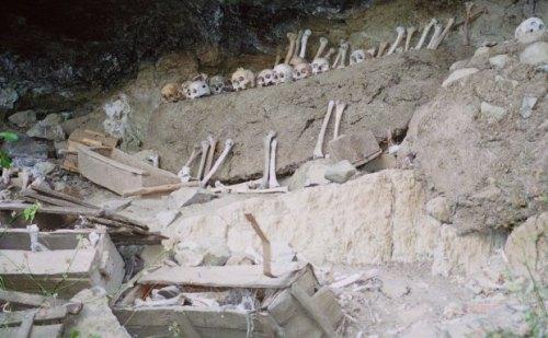 monks-bones