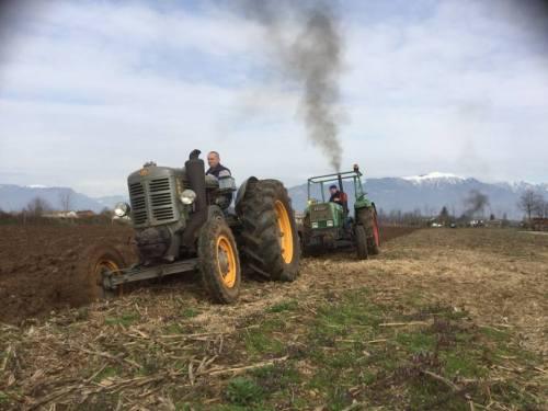 contadini-al-lavoro
