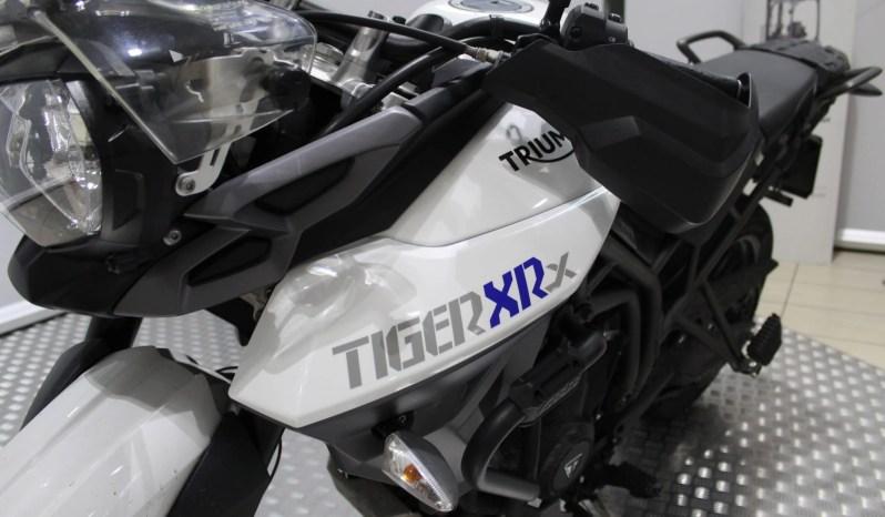 Triumph Tiger 800 Xrx pieno