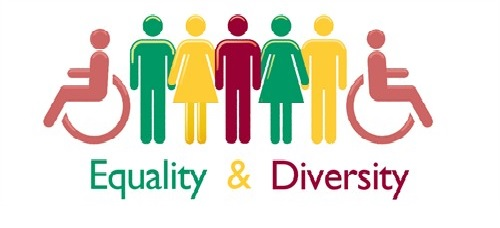 """Image result for What are equality and diversity?"""""""