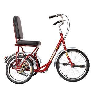 BOT Réglable Tricycle Trike,Vélos de Route, Cruiser vélo avec siège Confortable Dossier, système Roue Double Frein arrière, 3 Roues croisière vélo avec Panier for Loisirs, Centres commerciaux
