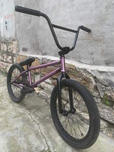 ZTBXQ Fitness Sports Outdoors Vélo BMX Freestyle 20 Pouces pour Cyclistes débutants à avancés Cadre Crmo Complet Haute résistance 25X9t BMX sans Frein