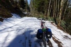 Im Wald talwärts zwischen Hinterzarten und Kirchzarten. Es liegt noch Schnee, ein umgestürzter Baum versperrt den Weg.