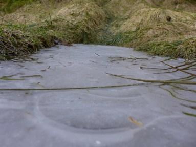 Eis am Wegrand. Es sind noch kalte Nächte Anfang April.