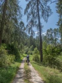 Vom Vinschgau ins Münstertal führt ein wunderbarer Veloweg durch den Wald. | © 2018 Dominik Thali