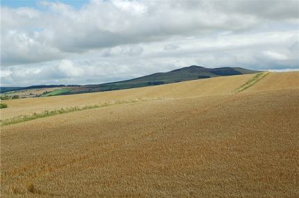 The beautiful Scottish Borders.