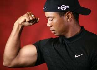 Think Tiger has built these guns just for looking good in the bars?
