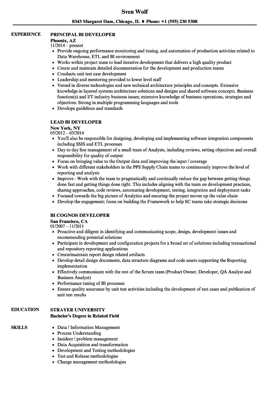 Developer Bi Resume Samples Velvet Jobs