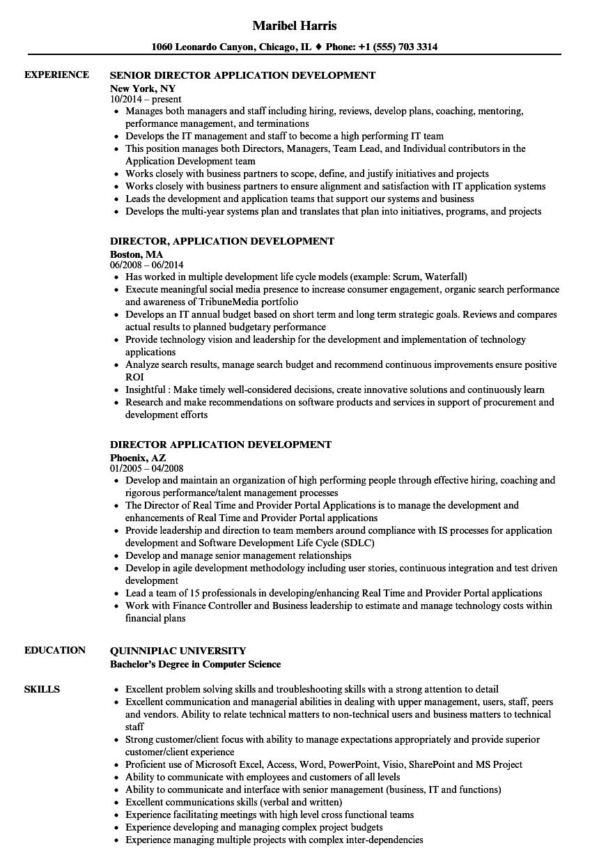 Director Application Development Resume Samples Velvet Jobs