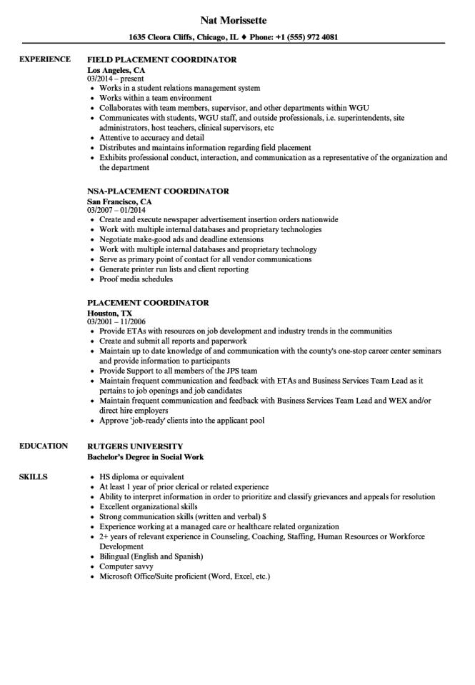 Placement Coordinator Resume Samples