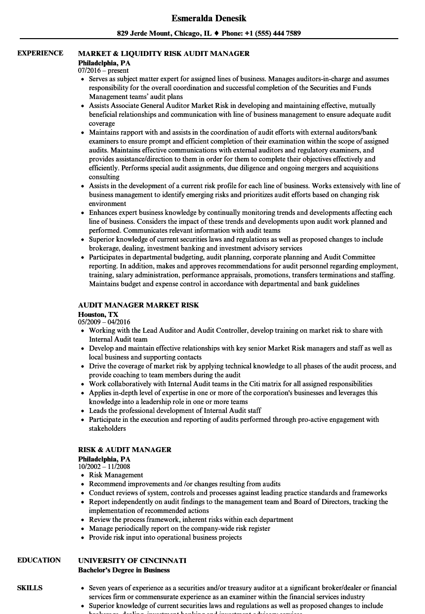 Risk Security Manager