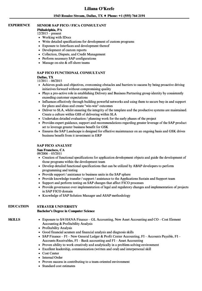 Sap Fico Resume Sample - Resume Sample