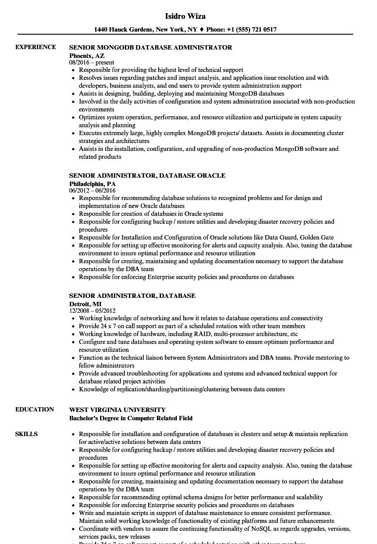 Senior Administrator Database Resume Samples Velvet Jobs