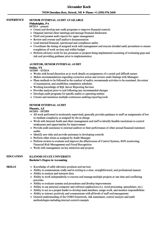 Senior Internal Audit Resume Samples Velvet Jobs