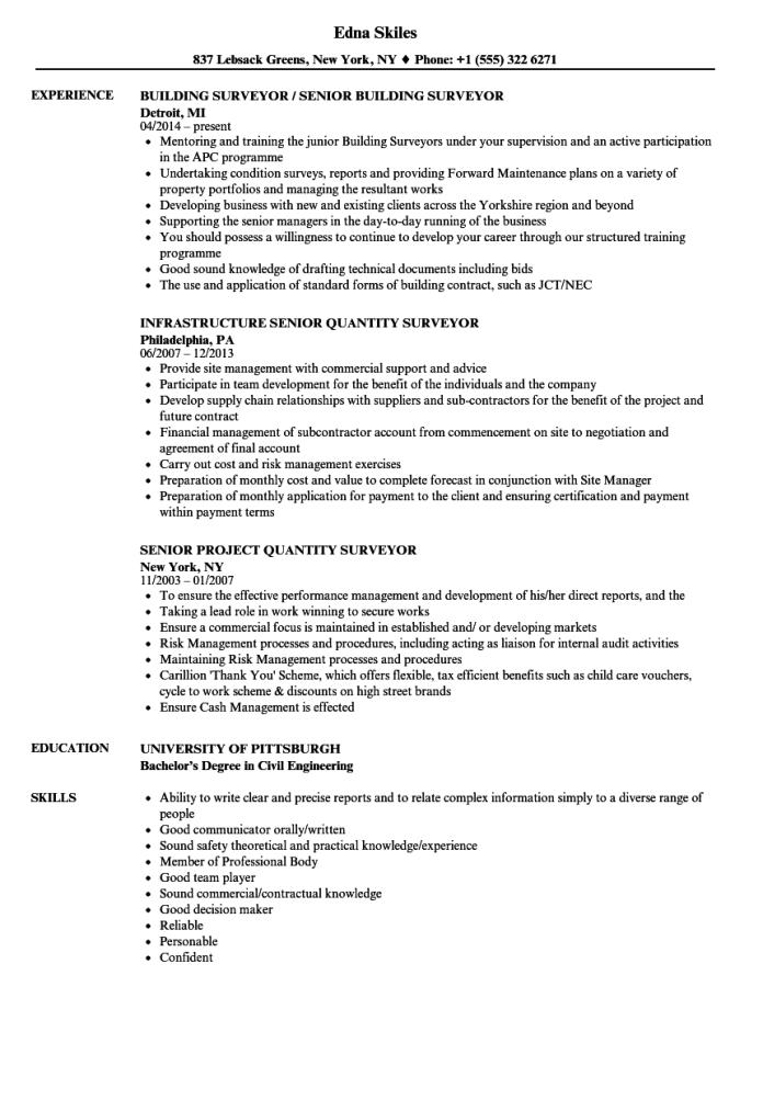 Surveyor Senior Resume Samples Velvet Jobs