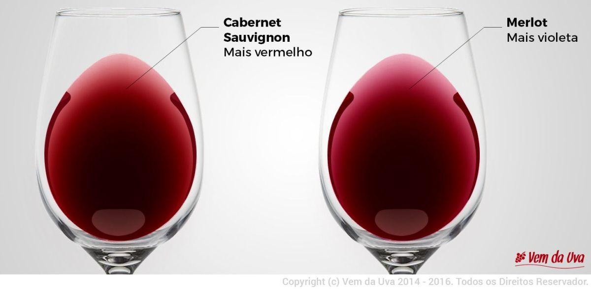 Quais as características básicas do vinho Cabernet Sauvignon?