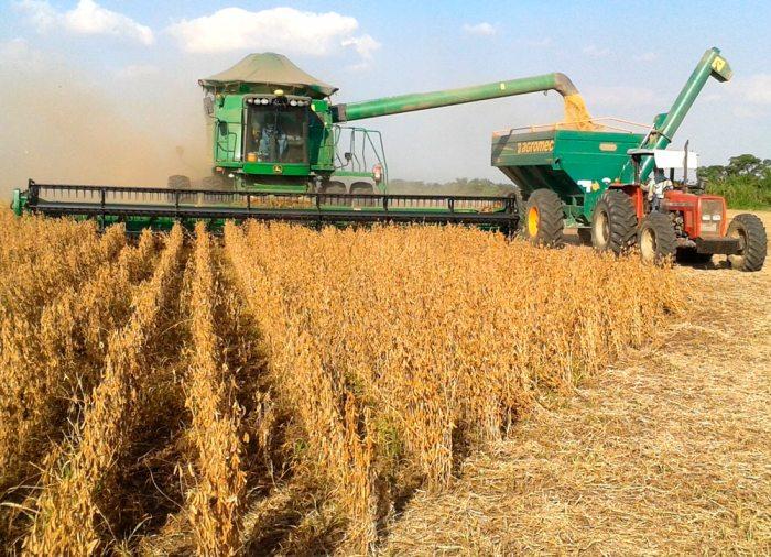 Restauración del neoliberalismo para beneficio de la agroindustria cruceña: la legalización de los transgénicos
