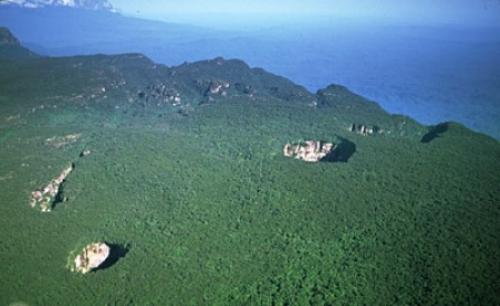 Tepuy del Parque Nacional Jaua-Sarisariñama