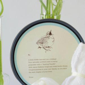"Petite Nesting Bundle #1 Onesie, Knotted Hat and a Robins egg soap ""Some Bunny Loves You"""