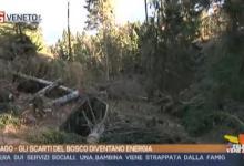TG Veneto: le notizie del 18 dicembre