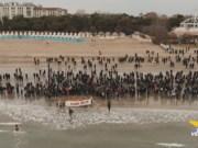 Ibernisti del Lido di Venezia: Auguri di Capodanno 2019