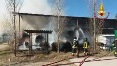 Incendio nella stalla di un maneggio a San Michele al Tagliamento