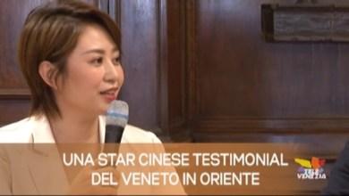 TG Veneto: le notizie del 7 marzo 2019