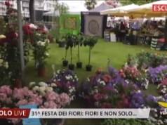 Festa dei fiori di Jesolo la 31° edizione