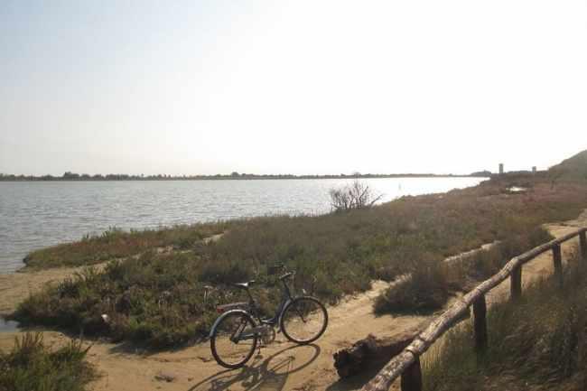 Laguna del Mort ripulita dai detriti delle mareggiate