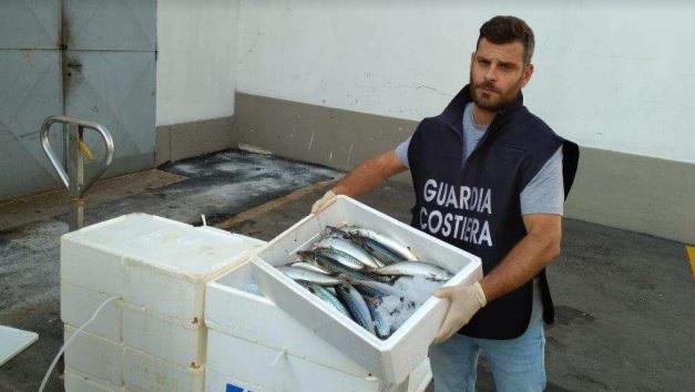 Sequestrate 4 tonnellate di prodotti ittici a Piove di Sacco