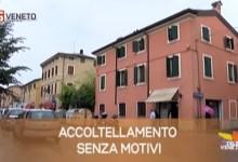 TG Veneto: le notizie del 15 luglio 2019