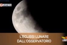 TG Veneto: le notizie del 17 luglio 2019
