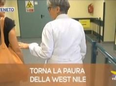 TG Veneto: le notizie del 19 luglio 2019