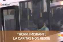 TG Veneto le notizie del 31 luglio 2019