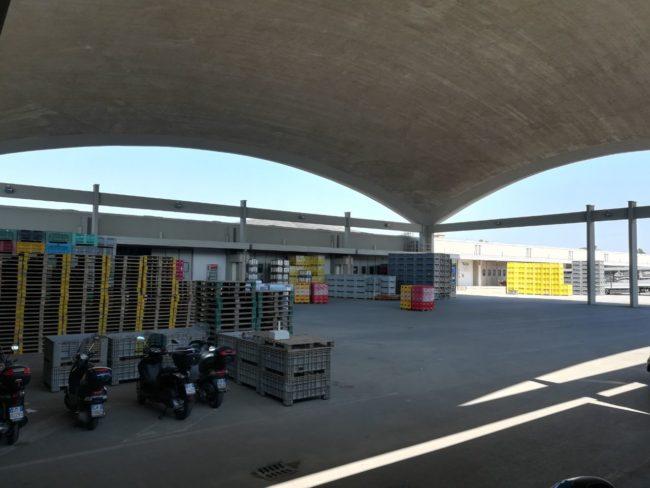 Mercato ortofrutticolo di Chioggia: inaugurate le nuove celle frigo
