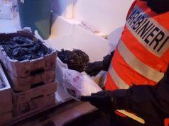 Trenta chili di alimenti scaduti in un bar: maxi multa