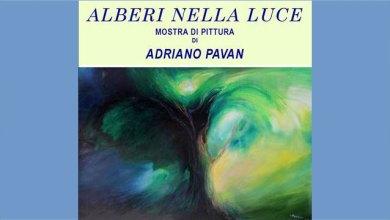 """Adriano Pavan: la mostra """"Alberi nella Luce"""" a San Donà"""