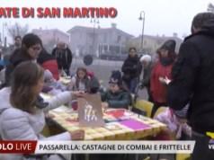 Castagnata di San Martino a Passarella di Sotto 2019