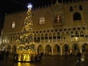 Natale 2019 a Venezia accesi l'albero e le luminarie
