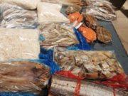 Sequestrati 60 chili di pesce senza certificazione sanitaria