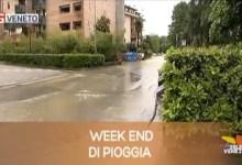 TG Veneto: le notizie del 22 novembre 2019