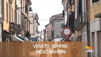 TG Veneto: le notizie del 4 novembre 2019