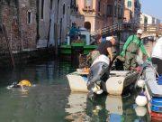 Gondolieri sub tornano domenica per recuperare i rifiuti sommersi - Televenezia