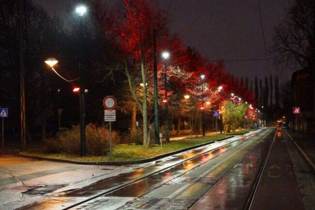Marghera: accesi i nuovi percorsi colorati a led