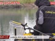 Trofeo Lucchetta: gara di pesca sul fiume Sile 2019
