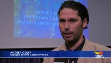Coronavirus: in crisi la vendita a chilometro zero