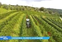 VIDEO: Coldiretti Treviso e Coronavirus: la situazione. Parla Giorgio Polegato - Televenezia