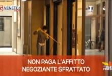 TG Veneto News: le notizie del 13 maggio 2020